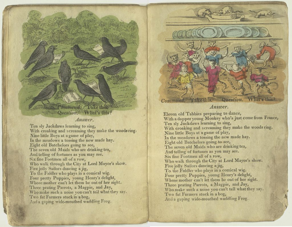 Verses for ten jackdaws and eleven tabbies